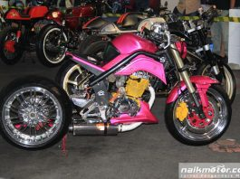 Pink Fighter