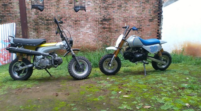 Duo Honda Mini Scrambler