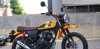 DP Kawasaki W175TR