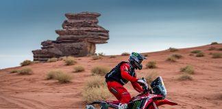 Stage 10 Reli Dakar